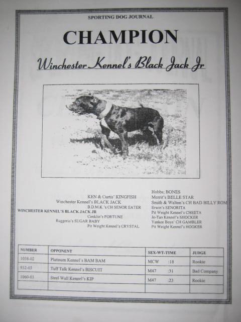 Blackjack pitbull pedigree - Packaged keno to go maryland