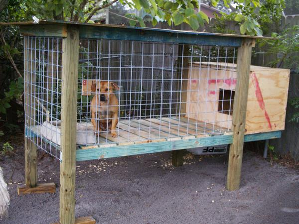 Above Ground Dog Kennels For Sale