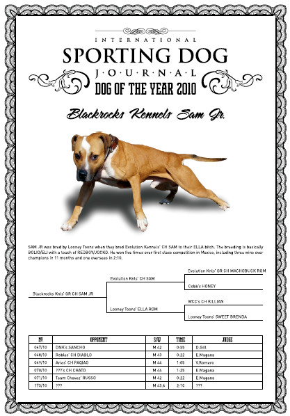 ONLINE PEDIGREES :: [462523] :: CH BLACKROCKS KENNEL'S SAM JR (6XW)