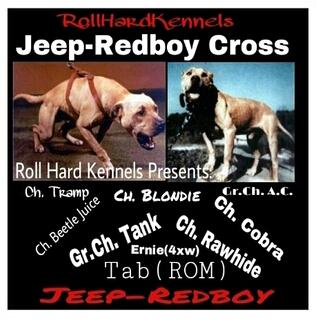 Online Pedigrees :: :: JEEP-REDBOY SUPER STICK :: [481367]